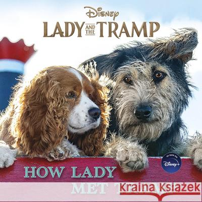 Lady and the Tramp Live Action 8x8 with Poster Disney Book Group 9781368059251