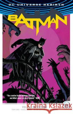 Batman Vol. 2: I Am Suicide (Rebirth) Tom King 9781401268541