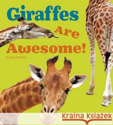 Giraffes Are Awesome Lisa Amstutz 9781406288469
