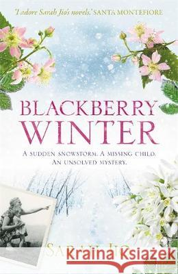 Blackberry Winter Sarah Jio   9781409190776