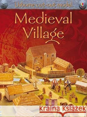 Make This Medieval Village Ian Ashman 9781409501053
