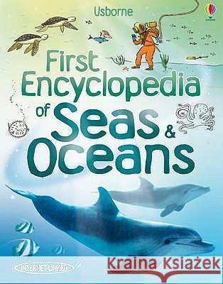 First Encyclopedia of Seas and Oceans Ben Denne 9781409525073