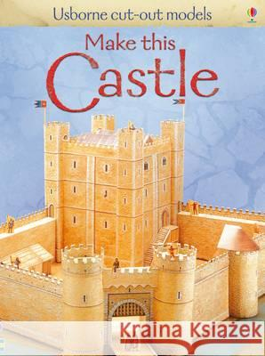 Make This Castle  Ashman, Iain 9781409525493