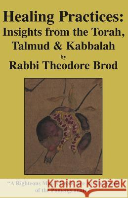 Healing Practices: Insights from the Torah, Talmud and Kabbalah Rabbi Theodore Brod 9781413474756