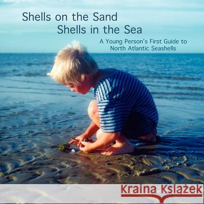 Shells on the Sand, Shells in the Sea Frances Haviland 9781413490664