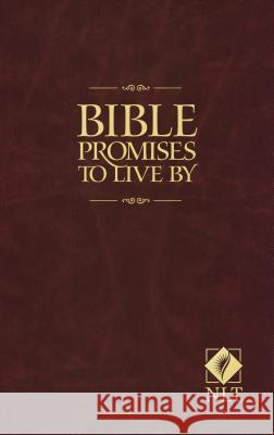 Bible Promises to Live by Ron Beers Amy E. Mason 9781414313559