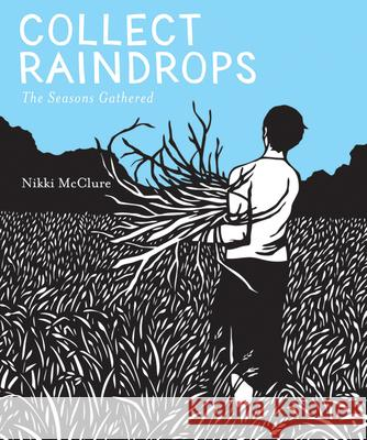 Collect Raindrops: The Seasons Gathered Nikki McClure Nikki McClure 9781419711671