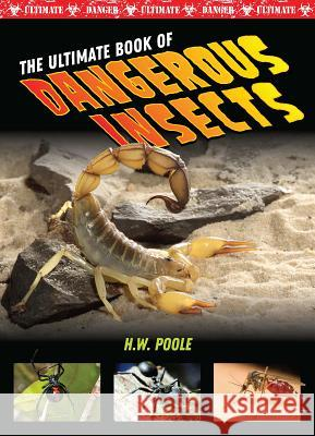 The Ultimate Book of Dangerous Insects John Perritano 9781422242261