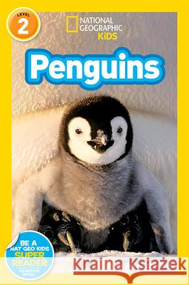 National Geographic Readers: Penguins! Anne Schreiber 9781426304262