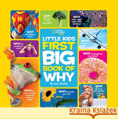 National Geographic Little Kids First Big Book of Why Susan Magsamen 9781426307935