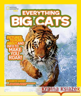 National Geographic Kids Everything Big Cats Elizabeth Carney 9781426308055 National Geographic Society