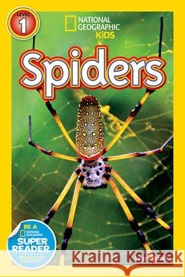 Spiders Laura Marsh 9781426308512