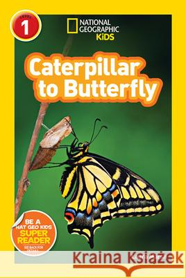 Caterpillar to Butterfly Laura Marsh 9781426309212