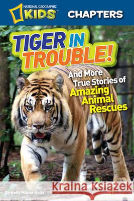 Tiger in Trouble!: And More True Stories of Amazing Animal Rescues Kelly Milner Halls 9781426310782