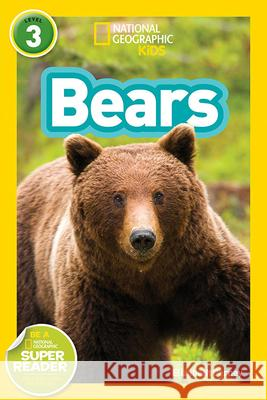 Bears National Geographic Kids 9781426324444