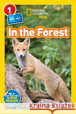 In the Forest National Geographic Kids 9781426326219
