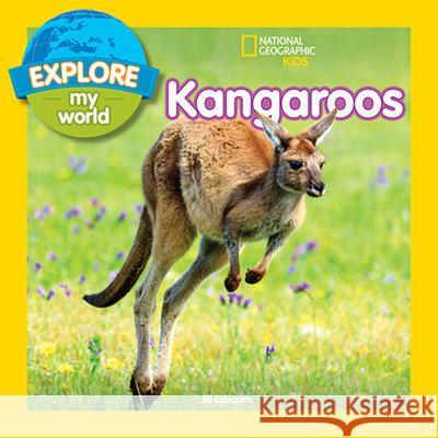Explore My World: Kangaroos Jill Esbaum 9781426331589