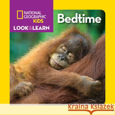 Look & Learn: Bedtime Ruth A. Musgrave 9781426333217