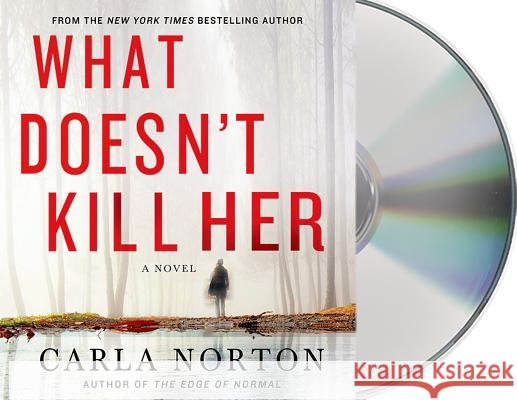What Doesn't Kill Her - audiobook Carla Norton Christina Delaine 9781427243812