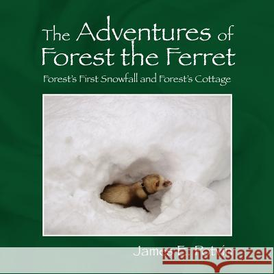 The Adventures of Forest the Ferret James E. Potvin 9781432705565