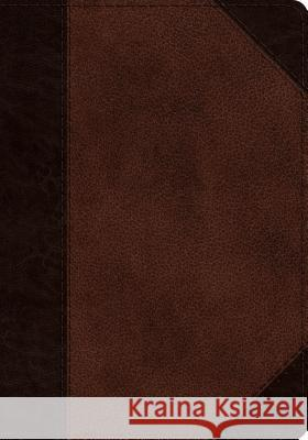 ESV Journaling Psalter (Trutone, Brown/Walnut, Portfolio Design)  9781433557606