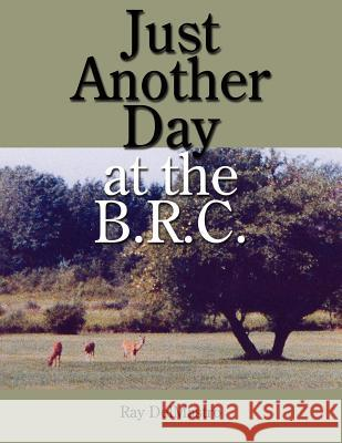 Just Another Day at the B.R.C. Ray Delmastro 9781434310989