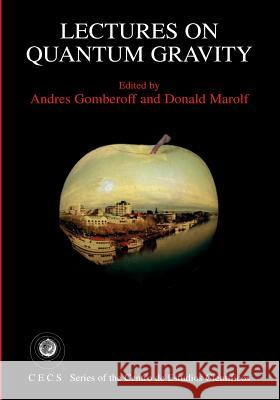 Lectures on Quantum Gravity Andres Gomberoff Donald Marolf 9781441936776 Not Avail