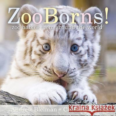 Zooborns!: Zoo Babies from Around the World Andrew Bleiman Chris Eastland 9781442443297