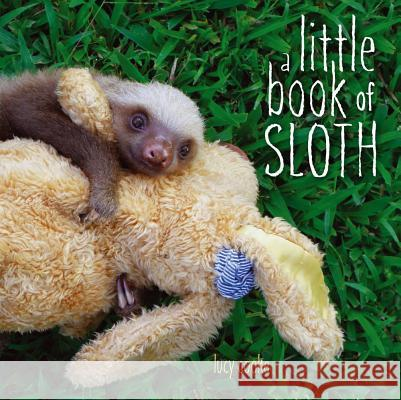 A Little Book of Sloth Lucy Cooke Lucy Cooke 9781442445574
