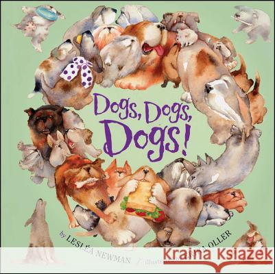 Dogs, Dogs, Dogs! Leslea Newman Erika Oller 9781442452282 Simon & Schuster Books for Young Readers