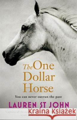 The One Dollar Horse : Book 1 Lauren St John 9781444006360