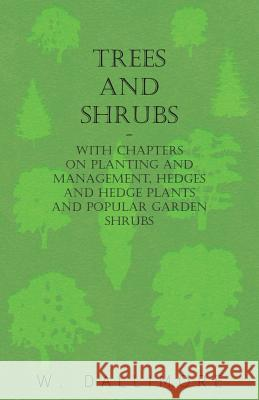Trees and Shrubs - With Chapters on Planting and Management, Hedges and Hedge Plants and Popular Garden Shrubs W. Dallimore 9781446524015