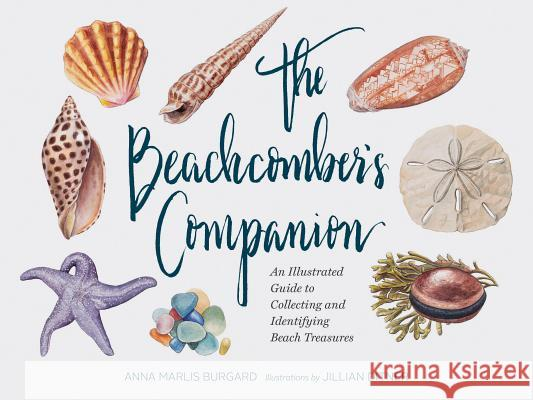The Beachcomber's Companion: An Illustrated Guide to Collecting and Identifying Beach Treasures Anna Burgard Jillian Ditner 9781452161167