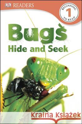 Bugs Hide and Seek Laura Buller 9781465419958