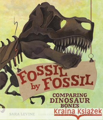 Fossil by Fossil: Comparing Dinosaur Bones Sara Levine T. S. Spookytooth 9781467794893 Millbrook Press