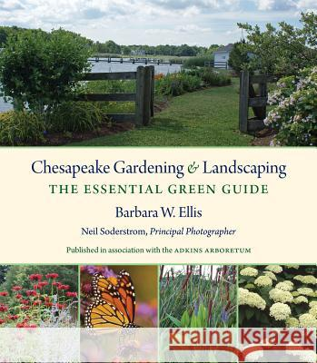 Chesapeake Gardening and Landscaping: The Essential Green Guide Barbara W. Ellis 9781469620978