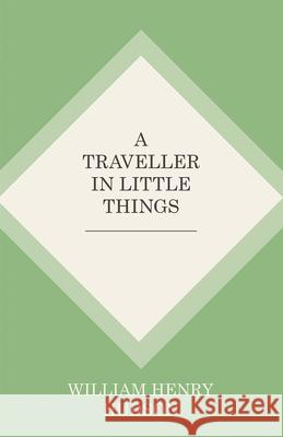 A Traveller in Little Things William Henry Hudson 9781473335714
