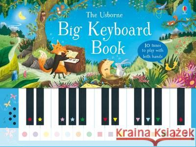 Big Keyboard Book  Taplin, Sam 9781474921176