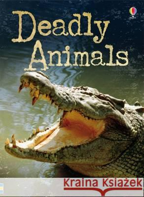Deadly Animals  Brook, Henry 9781474929011