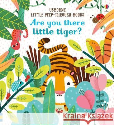 Are You There Little Tiger? Taplin, Sam 9781474936804