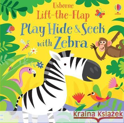 Play Hide and Seek with Zebra Sam Taplin 9781474968737