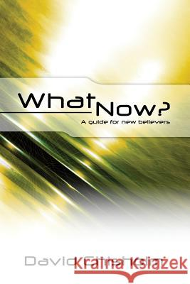 What Now ?: A Guide for New Believers Dr David R. Chisholm 9781475102512