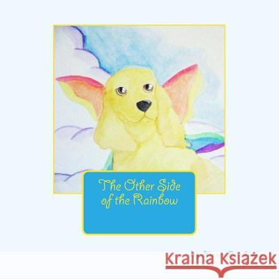 The Other Side of the Rainbow Marie Pembroke 9781478140924 Createspace
