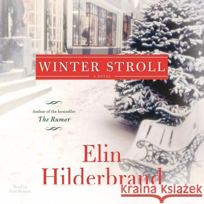 Winter Stroll - audiobook Elin Hilderbrand 9781478935971