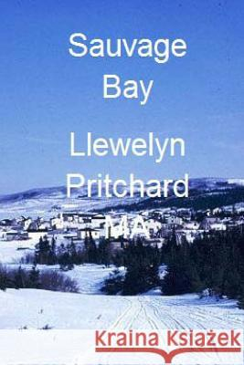 Sauvage Bay: Port Hope Simpson Mysteres Llewelyn Pritchard 9781480026933