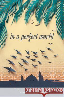 In a Perfect World Trish Doller 9781481479899