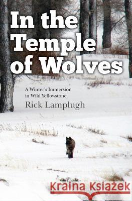 In the Temple of Wolves: A Winter's Immersion in Wild Yellowstone Rick Lamplugh 9781490372051