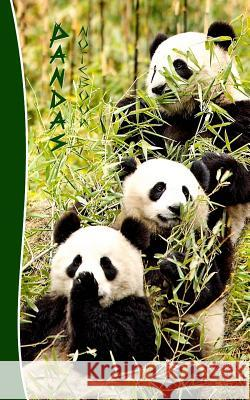 Pandas Notebook: Gifts / Presents ( Chinese Giant Panda Bears Ruled Notebook ) Smart Bookx 9781505467789