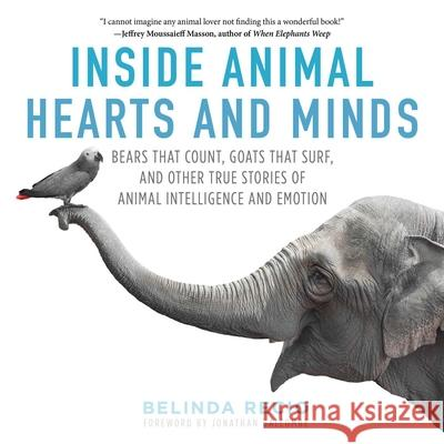 Inside Animal Hearts and Minds: Bears That Count, Goats That Surf, and Other True Stories of Animal Intelligence and Emotion Belinda Recio 9781510718944