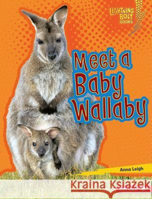 Meet a Baby Wallaby Anna Leigh 9781512433869